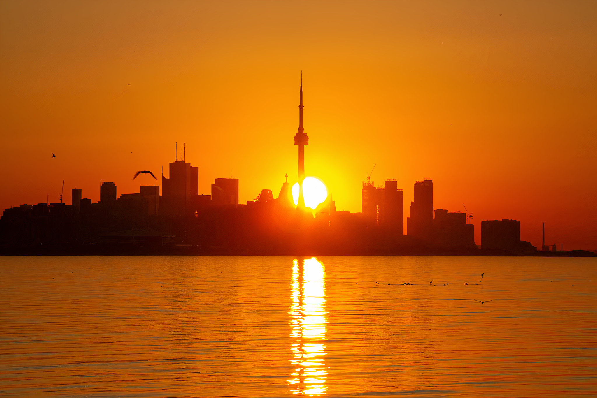 Source: Torontostar.com